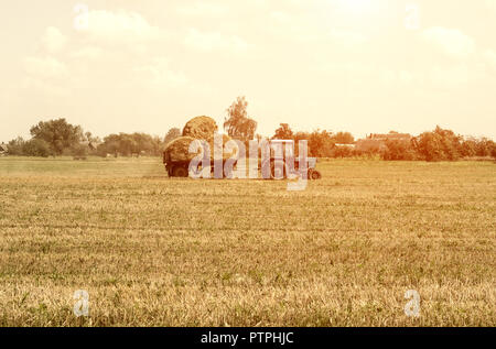 Agriculture and tractor collects straw bales on the farm plant - Stock Photo