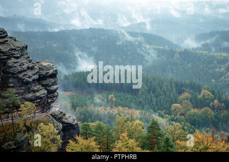 Czech Switzerland (Bohemian Switzerland or Ceske Svycarsko) National Park. Misty landscape with fir forest. - Stock Photo