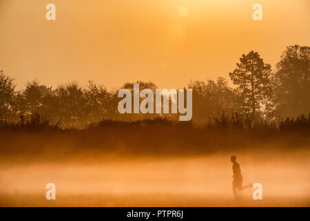 A man runs through the early morning mist as the sun rises over farmland near the village of Lower Wraxall in Wiltshire.