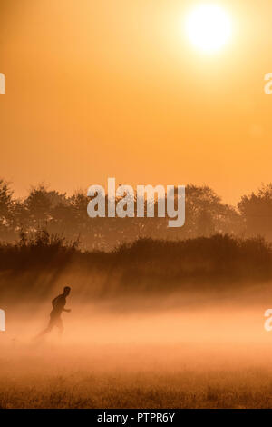 A man runs through the early morning mist as the sun rises over farmland near the village of Lower Wraxall in Wiltshire. - Stock Photo