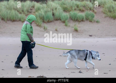 Freshwater East, Pembrokeshire, Wales, 11h October 2018. UK Weather: Wet stormy weather begins to make for heavy seas with Storm Callum making for a stormy weekend ahead.  Pembrokeshire, Wales. A lone dog walker with her her husky head down into the wet and windy weather on the shoreline at Freshwater East, Pembrokeshire ©DGDImages/AlamyNews - Stock Photo