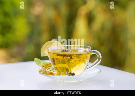 Linden inflorescences, herbal tea, view from high angle, space for a text. - Stock Photo