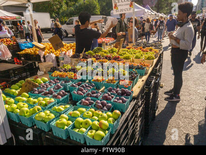Grapes and other fruit at the Union Square Greenmarket in New York on Wednesday, October 10, 2018 on an unseasonably warm fall day.   (© Richard B. Levine) - Stock Photo