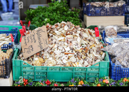 One of (9) images relating to various vegetables for sale on stalls in Munich's Market. Mushrooms are priced in Euros and are in German language. - Stock Photo