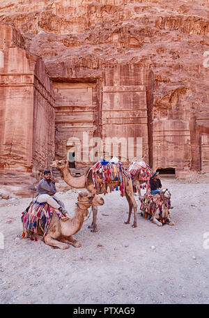 PETRA, JORDAN - JUNE 15, 2018: Four camels and their drivers wait for rides in front of one of the ancient tombs of Petra that are carved into the roc - Stock Photo