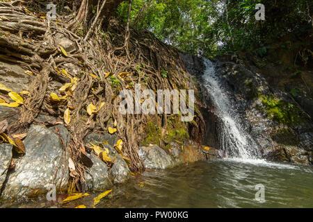 Kaeng nyui waterfall in Vang Vieng, Laos. Tropical rainforest  waterfall - Stock Photo