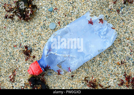 Single plastic bottle left on a sandy beach - John Gollop - Stock Photo