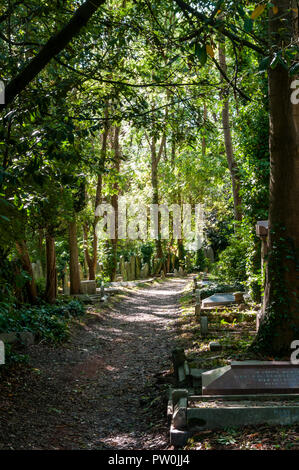 A path through Highgate Cemetery with graves among the trees. - Stock Photo