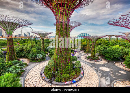 The Supertree Grove at Gardens by the Bay nature park, Singapore - Stock Photo