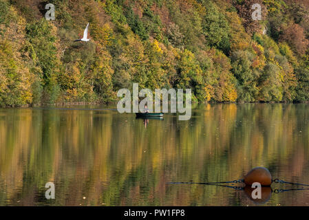 12 October 2018, North Rhine-Westphalia, Herdecke: An angler throwing his fishing rod from a boat on Lake Hengstey. Photo: Bernd Thissen/dpa - Stock Photo
