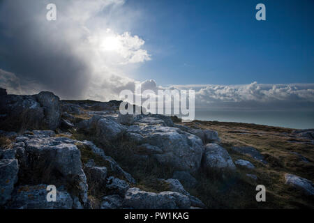 Limestone pavements on the Great Orme - Stock Photo
