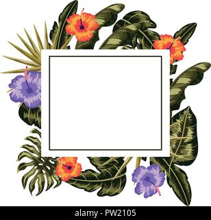 Tropical flowers frame - Stock Photo