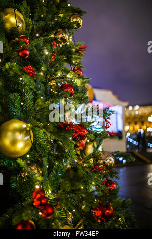photo of new year decorated fir trees on background of dark blue sky stock