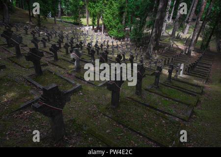 Vilnius cemetery, view of hillside in Antakalnis Cemetery containing the graves of hundreds of Polish soldiers who died between 1919-1920, Lithuania. - Stock Photo