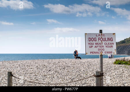 A warning sign about dog fouling on the beach in the coastal town of Lyme Regis in Dorset. - Stock Photo