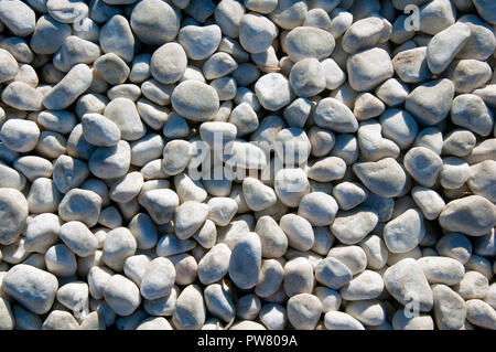 Small white stones as the background, daytime, summer - Stock Photo