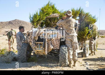 U.S. Marines with Regimental Surveillance and Target Acquisition Company (RSTAC), 1st Marine Division, camouflage a Polaris Razor vehicle during a field operation at Fort Irwin, Calif., October 2, 2017. RSTAC is an experimental company designed to build proficiency in scout sniper operations for service level exercises. - Stock Photo