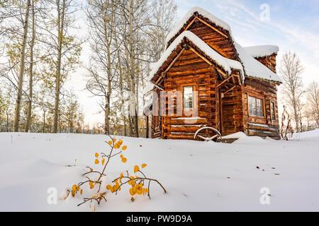 funky log cabin snow 83 mile house cariboo region british
