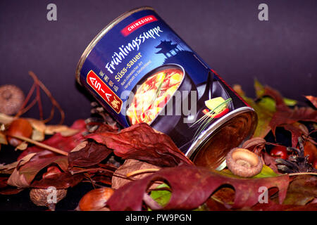 CONCEPT FOOD : Chinese soup - Stock Photo