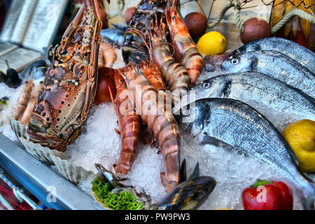 Mixed seafood on a fishmongers counter - Stock Photo