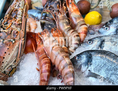 Mixed seafood display on a fishmongers crushed ice counter - Stock Photo
