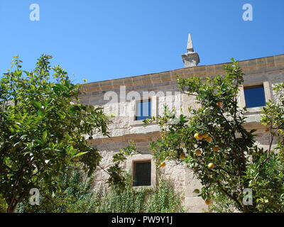Mediterranean building with small decorative tower on roof and orange tree at front - Stock Photo