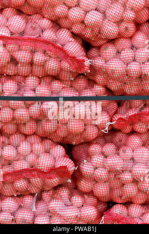 vertical of Spanish onions in red mesh sacks for british export, selective focus blurred background to ad copy space - Stock Photo
