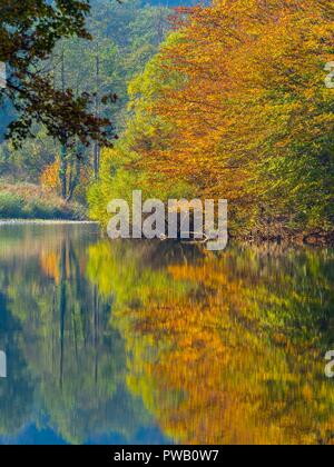 Autumn scenery in nature Brod na Kupi in Croatia