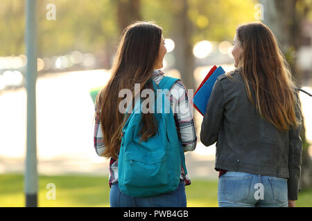 Back view of two happy students walking and talking in a university campus