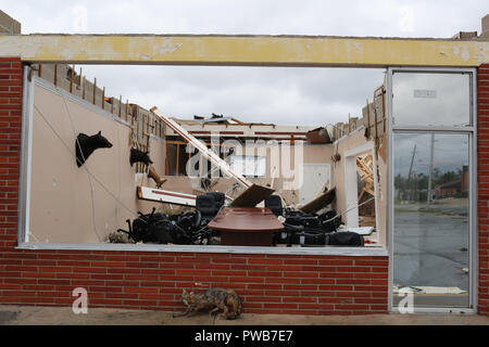 Panama City, FLORIDAY, USA. 10th Oct, 2018. A destroyed shop sits after Hurricane Michael passed over in Panama City, Florida USA on October 10, 2018. Hurricane Michael made landfall in the Florida panhandle as a Category 4 hurricane. Credit: Dan Anderson/ZUMA Wire/Alamy Live News - Stock Photo