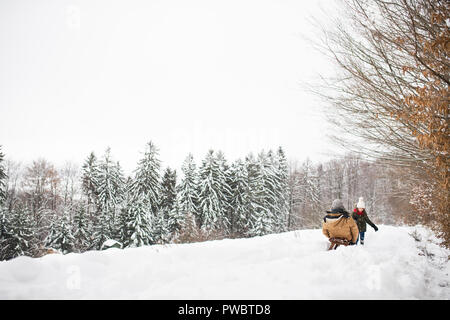 Senior grandfather and a small girl sledging, having fun. A girl pulling grandfather on a sleigh on a winter day. Rear view. - Stock Photo