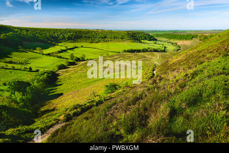 Hole of Horcum in the North York Moors with view of farmland, moorland, and vegetation on a fine spring/summer morning, Goathland, Yorkshire, UK. - Stock Photo