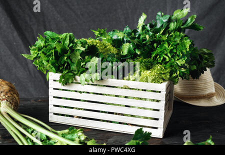 Freshly picked herbs in wooden box harvesting concept - Stock Photo