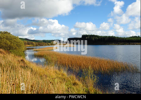 Scenic view on Meenameen lake in Lough Navar Forest in Co. Fermanagh, Northen Ireland - Stock Photo