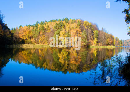 Beautiful colorful trees forest in Autumn reflected in a blue lake like in a mirror