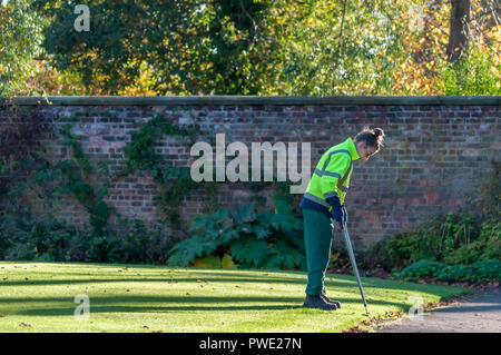 Glasgow, Scotland, UK. 15th October, 2018. UK Weather. A female gardener clipping the edges of the lawn on a sunny afternoon in the walled garden of  Bellahouston Park. Credit: Skully/Alamy Live News - Stock Photo
