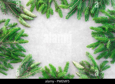 Frame made of green pine branches with cones, on light gray concrete background. - Stock Photo