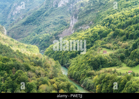 Tara canyon, Montenegro. The second deepest canyon in the World after the Grand Canyon, USA - Stock Photo