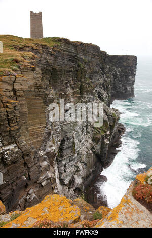 Nesting birds and the Kitchener memorial, Marwick Head, Orkney - Stock Photo