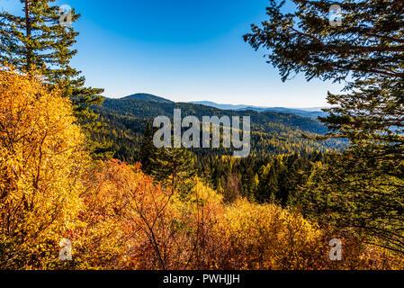 Autumn Scenery In Mount Spokane State Park, Spokane, Washington, USA - Stock Photo
