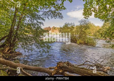 A woodland with the River Derwent flowing downstream from a weir.  The old monastery ruins of Kirkham Priory can be seen in the distance. - Stock Photo