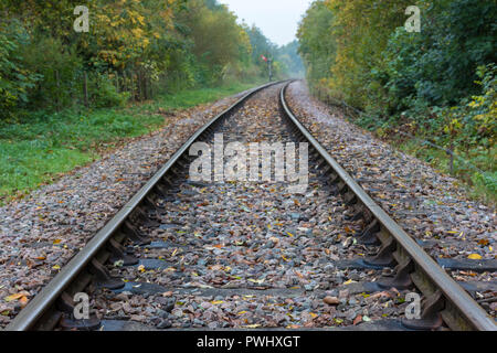railway tracks or rail lines between trees disappearing into the distance. - Stock Photo