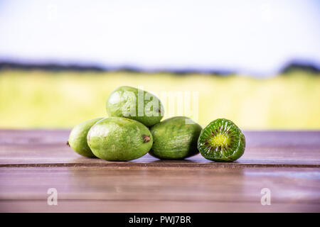 Group of five whole one half of fresh green mini baby kiwi fruit with green wheat field in background - Stock Photo