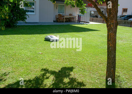 battery powered robotic lawn mower cutting grass - Stock Photo