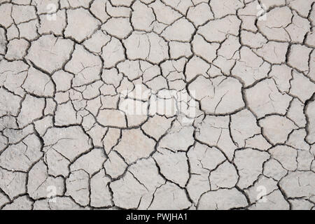Cracks in mud, Norfolk coast, UK - Stock Photo