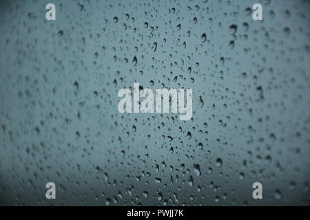 Rain drops on Glass - Stock Photo