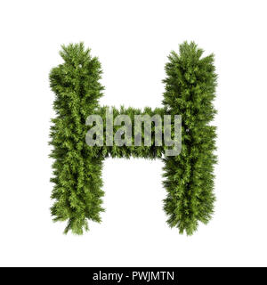 Christmas alphabet ABC character letter H font. Christmas tree branches capital letters decoration type. Highly realistic 3d rendering illustration. T - Stock Photo