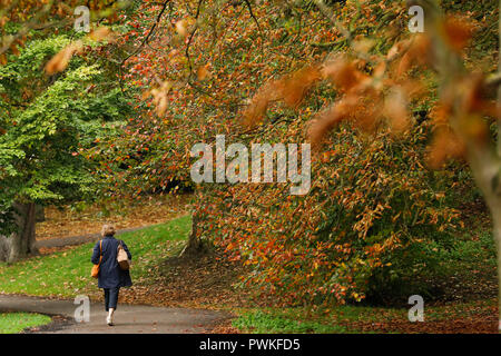Battersea Park, London. 17th Oct 2018. UK Weather: A woman walks among the colourful autumn leaves in Battersea Park in London, Wednesday October 17, 2018. Photograph : © Luke MacGregor Credit: Luke MacGregor/Alamy Live News - Stock Photo