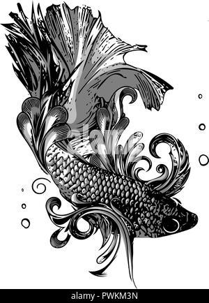 Gold Betta Siamese fighting fish, Betta splendens Pla-kad Thai. Betta fish - Stock Photo