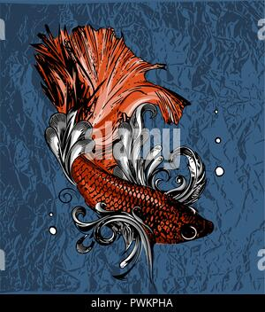 Vector vintage illustration of little veil fish - Stock Photo
